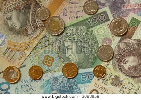 Strong Polish Money