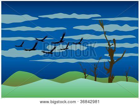 Free Birds Ilustration