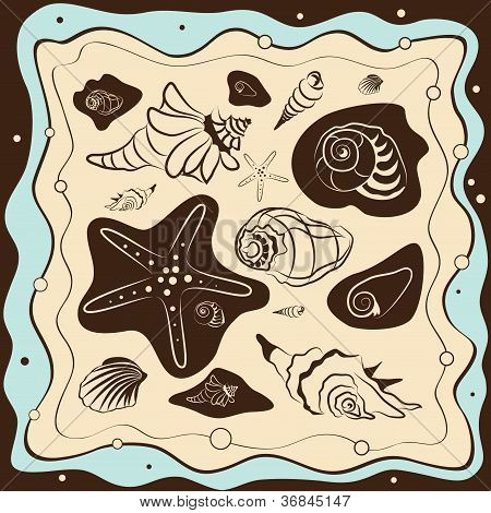Sea Shells Background, Vector Illustration