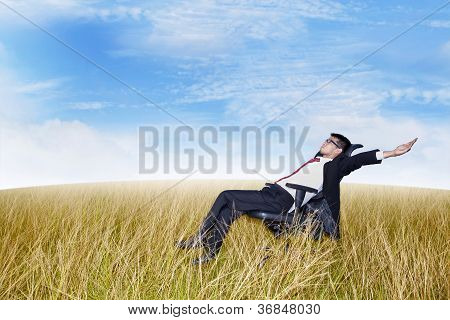 Businessman In The Meadow