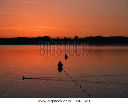 Beautiful Red Sunrise At Lake Chiemsee With A Duck Family