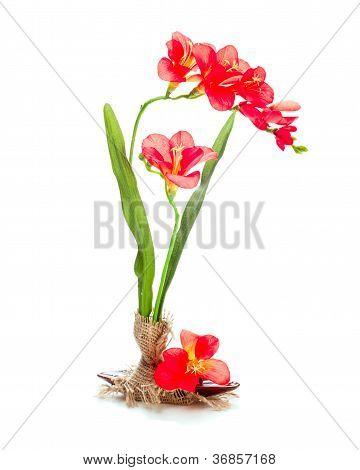 Stilleben aus künstlichen Blumen von einem freziya