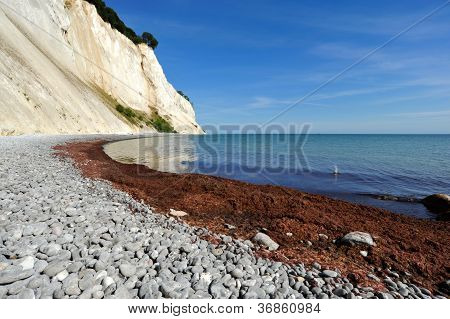 Danish Cliffs