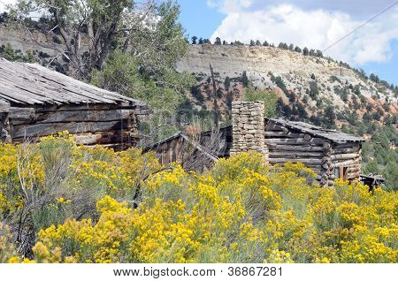 Aged Log Structures