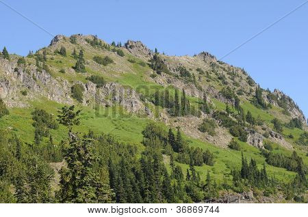 Green Washington Mountain