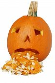 picture of puke  - Isolated Puking pumpkin on a white background - JPG