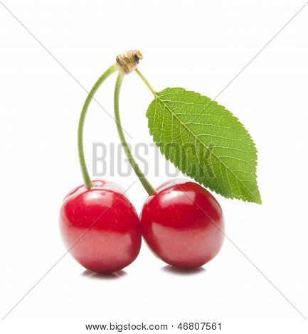 Two Delicious Red Cherries And Green Leaves.