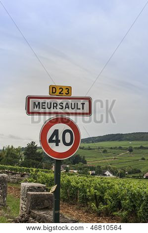 Meursault Vineyards And Sign