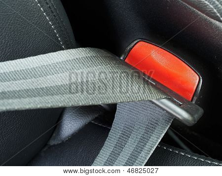 Fasten Seat Belts In The Car