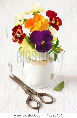 Beautiful Pansy Flowers.