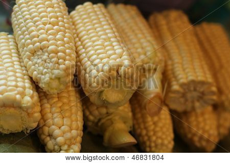 close view of homegrown corn