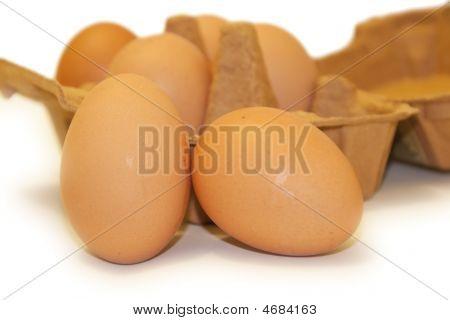 Eier isoliert