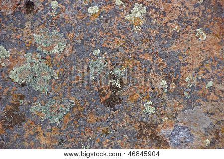 Details, Brightly Colored Lichen On Volcanic Boulde