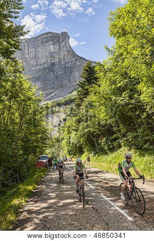 Amateur Cyslists Climbing Col Du Granier