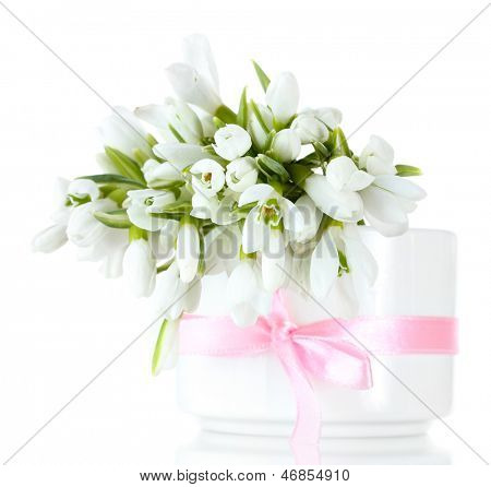 beautiful bouquet of snowdrops in vase with bow isolated on white
