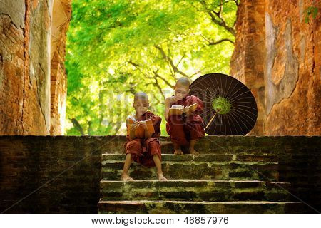 Young Buddhist monk reading outdoors, sitting outside monastery, Myanmar.