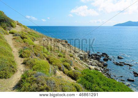 Small Path On Coastline Cliffs