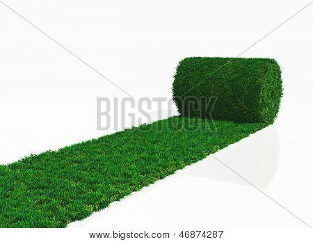 One Roll Of Grass Carpet