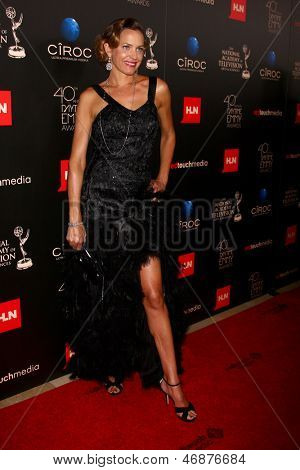 LOS ANGELES - JUN 16:  Arianne Zucker arrives at the 40th Daytime Emmy Awards at the Skirball Cultural Center on June 16, 2013 in Los Angeles, CA