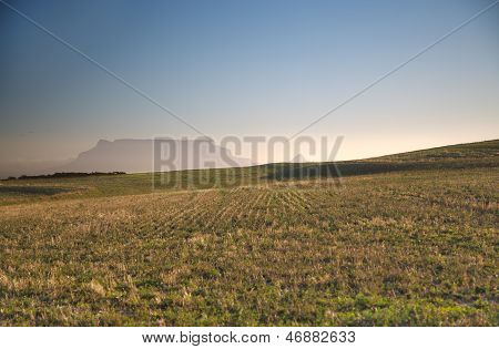 Table Mountain and peaceful green pastures