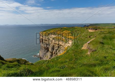 Haroldstone queixos Gales Coastal Path perto da Baía de Haven amplo e da St Bride