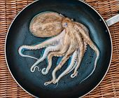 stock photo of sucker-fish  - Small raw octopus on the black pan - JPG