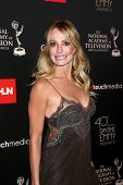 LOS ANGELES - JUN 16:  Taylor Armstrong arrives at the 40th Daytime Emmy Awards at the Skirball Cult