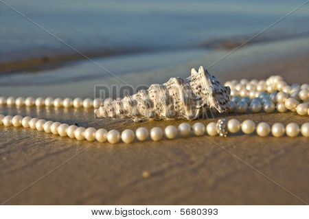 Cockleshell With Pearls