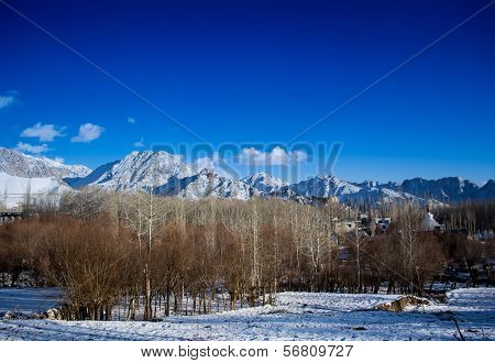 winter in Himalayan planes