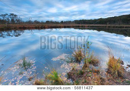 Sky Reflected In Little Lake