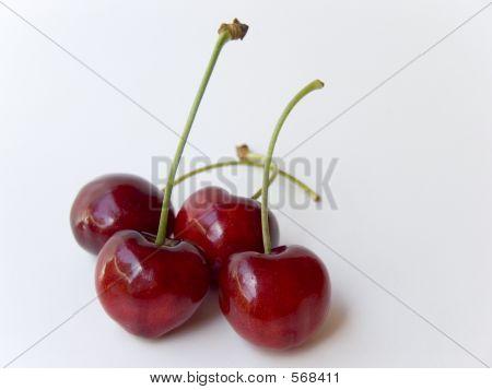Cherries On White 2