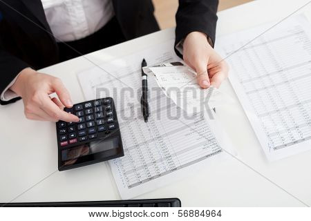 Cheerful Accountant Businesswoman