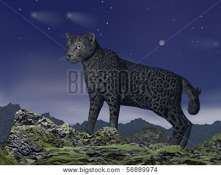 Black jaguar watching - 3D render