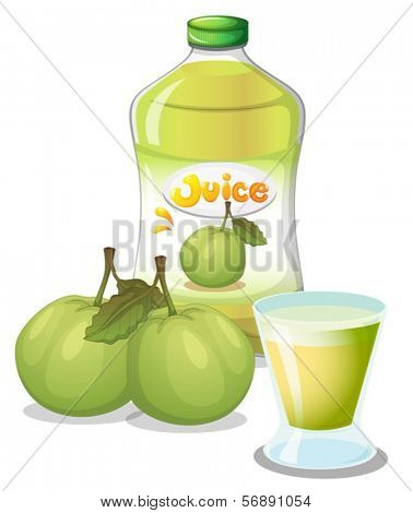 Illustration of a guava juice on a white background