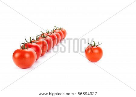 Red Tomatoes Lined Up In A Row On A White Background