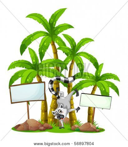 Illustration of a lemur in front of the palm trees with empty wooden boards on a white background