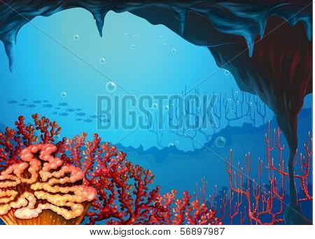 Illustration of a view of the coral reef
