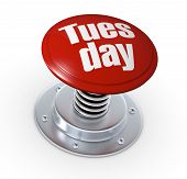 image of tuesday  - one push button with the text - JPG