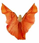 picture of belly-dance  - Woman in belly dance fabric dress as wings - JPG