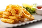 pic of squid  - Deep Fried Calamari Rings - JPG