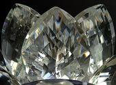 Crystal Lotus - Gold Tones