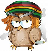 stock photo of reggae  - jamaican whit hat  owl cartoon on white background - JPG