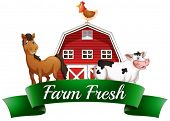 stock photo of hen house  - Illustration of the farm animals - JPG