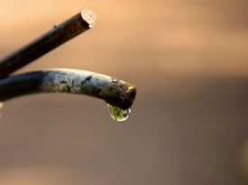 image of water shortage  - dripping water against a dry background - JPG