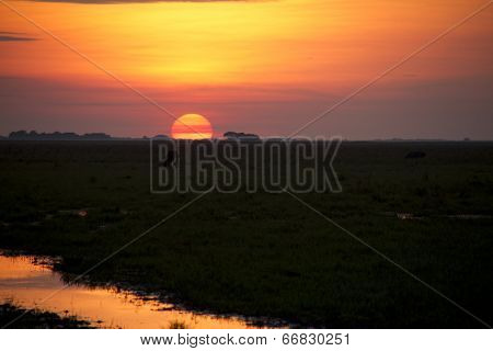 Sunset in Los Llanos tropical grassland in Venzuela