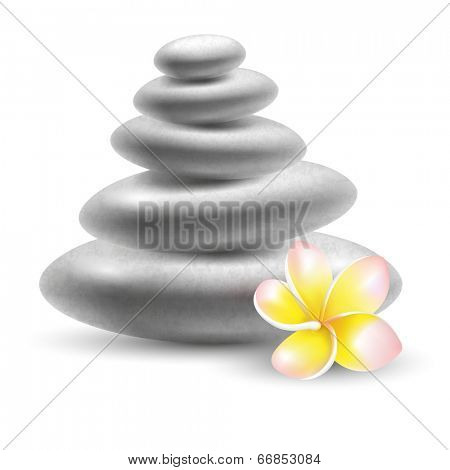 Spa still life with stones and frangipani flower. Vector illustration.