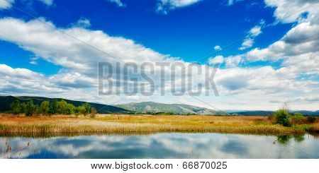 Dreamy Swamp Landscape With Overcast Skies Above