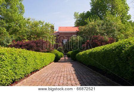 Brick path with shrubs