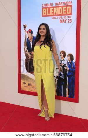 LOS ANGELES - MAY 21:  Aimee Goldsmith at the