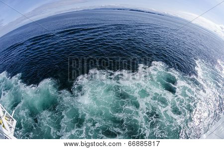 Fish Eye View of the Ocean
